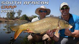 видео Поп - апы Fun Fishing Fluo. Уникальная формула цвета и плавучести