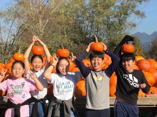 YSI 갤러리 - YSI Activity (October 19, 2018) - Pumpkin Patch