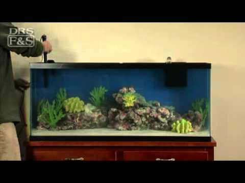 How To Set Up A Marine Aquarium | LiveAquaria.com