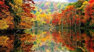 America the Beautiful in Autumn's Full Glory : 50 Pictures from the lower 48 States