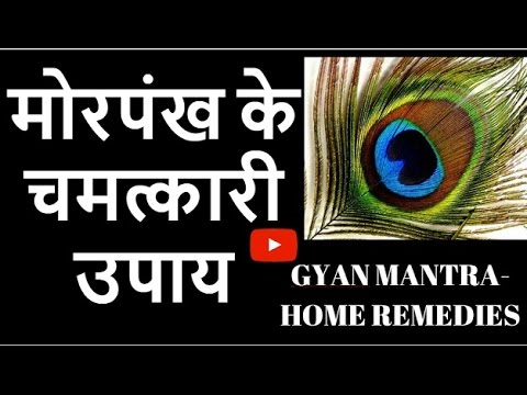 मोरपंख के चमत्कारी उपाय | Mor Pankh Ke Totke | Peacock Feather Vastu Remedy