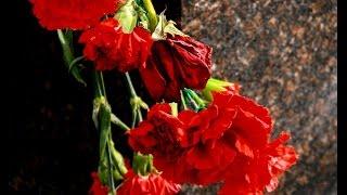 Возложение цветов («Пароход онлайн») Великий Новгород
