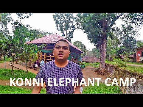 Konni Elephant Training Camp Video Blog Malayalam