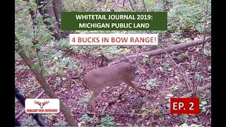 Whitetail Journal Ep. 2 - Michigan Public Land - 4 BUCKS IN BOW RANGE!