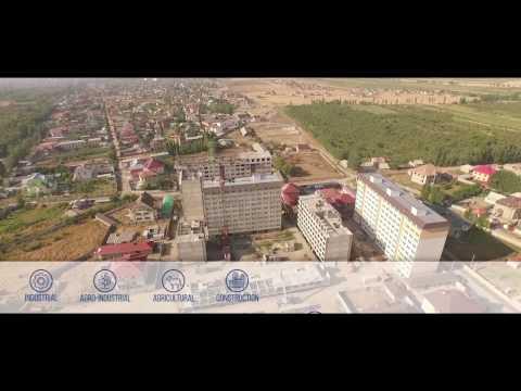 """Ayu Holding"" - leader Kyrgyz production."