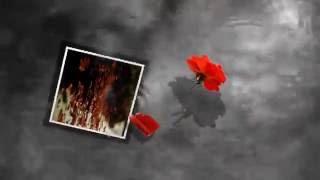 TERESA HỒN NHỎ- Nhạc: Phạm Vĩnh Sơn - Thơ: Nguyễn Sông Núi - Ca Sĩ: Lê Anh