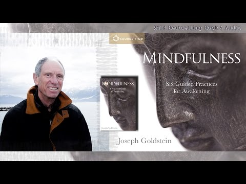 Joseph Goldstein – Mindfulness: A Practical Guide to Awakening (Audio Excerpt)
