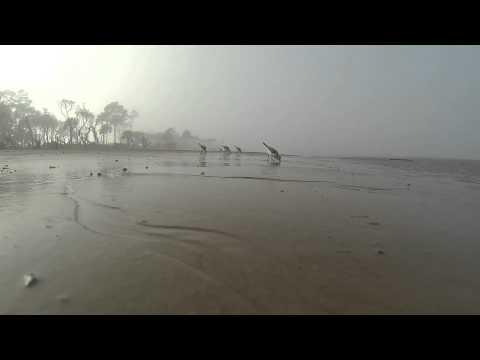 Little Talbot Island Jacksonville Florida GoPro Hero 3