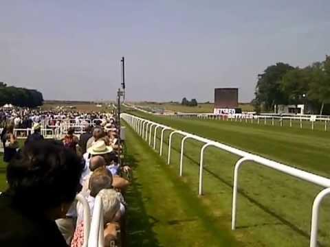 Horse Racing Today - Newmarket Races Winner