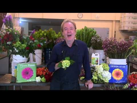 free-floral-design-classes-with-michael-gaffney