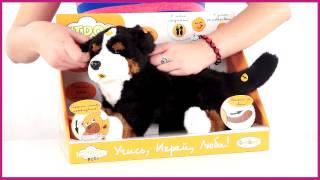 Teeboo Собака черная интерактивная 91210R-BKD) 32 см