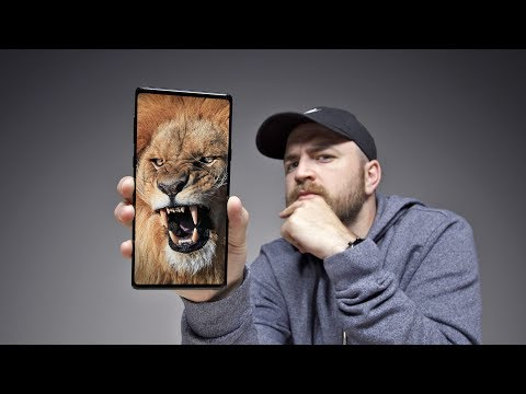 The Best Smartphone For YouTube