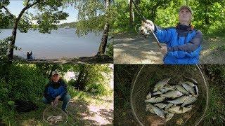 Рыбалка  в Тишково c фидером.Ловля плотвы на Пестовском водохранилище.