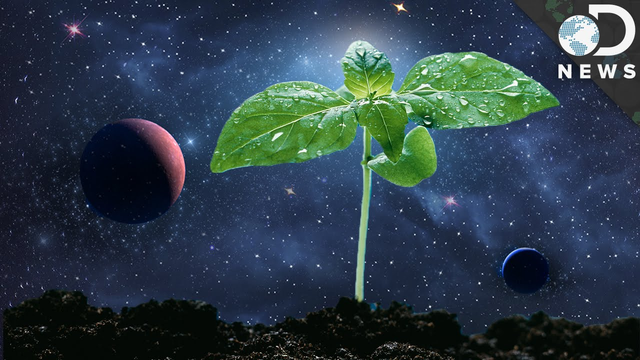 How Astronauts Grow Plants In Space Youtube Planet Inside Earth Diagram Pics About