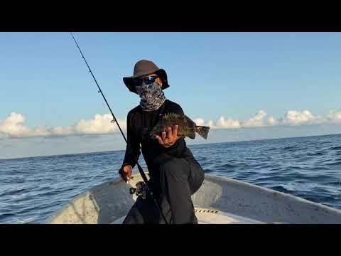 Panga Fishing Cabo Corriente, México July 21, 2020