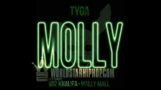 Tyga ft Wiz Khalifa and Mally Mall - Molly