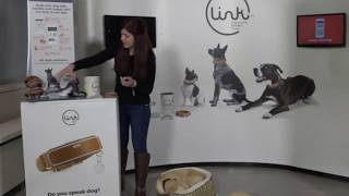 LINK AKC Featured on Amazon Livestream