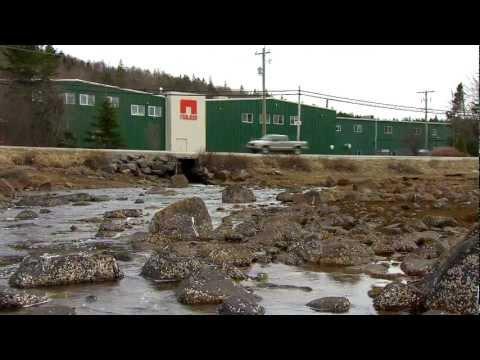 Nova Scotia  - International Commerce Strategy: Nautel