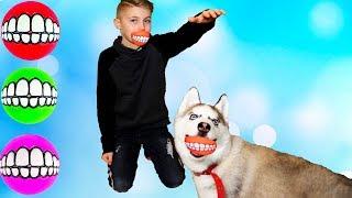 Хаски завалил ДАНЮ!!!Funny BaBy play with Funny Husky!!!Играем с Смешным-Хаски!!!