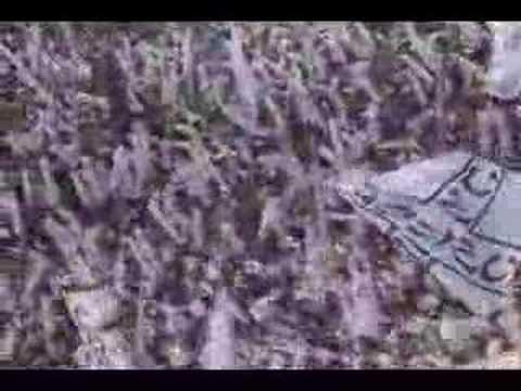 Flu x Figueira - A Benção João de Deus- Young D+