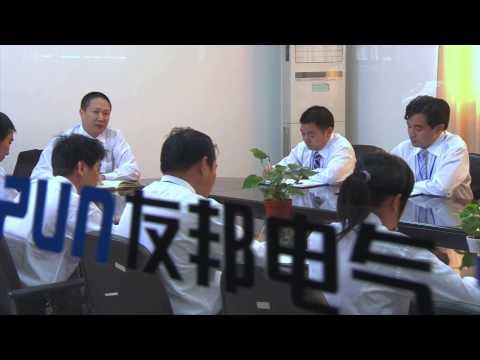 Shanghai UPUN Electric (Group) Co., Ltd.