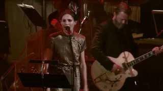 Nina Persson - Erase/Rewind (Gothenburg Concert Hall 2014)