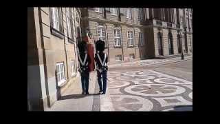 ECCO WALKATHON København 25. august 2013, فعالية المشي السنوية من تنظيم شركة الاحذية ايكو