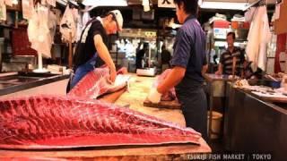TSUKIJI  FISH  MARKET   /   TOKYO  2010  【築地 / 東京】