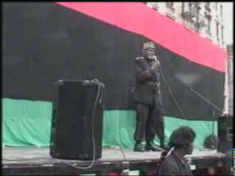 #2 New Black Panther Million Youth March (Afrikan Nationalist Pioneer Movement)