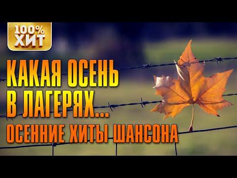 Осенние Хиты Шансона 🍂 Какая осень в лагерях 🍂 Душевные и Лирические Песни Сборник 2020