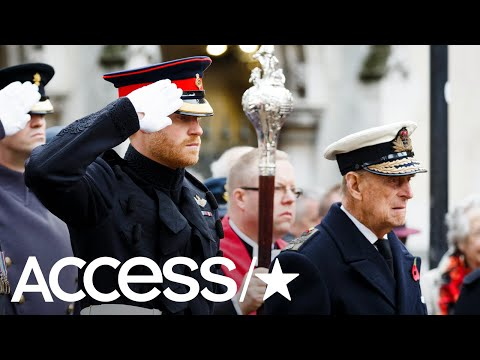 Prince Harry Appointed UK's Captain General Royal Marines | Access