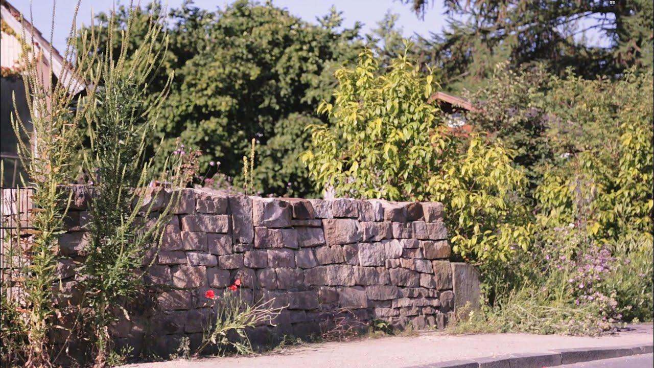 Naturgarten e v naturnaher garten f r wildpflanzen und for Naturgarten gestalten