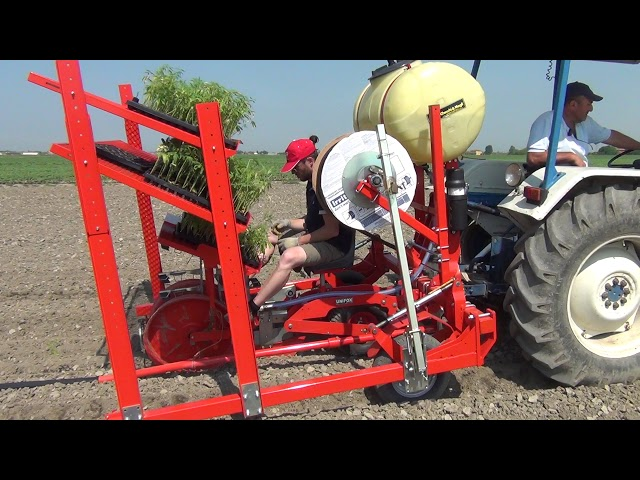 CHECCHI & MAGLI - UNIFOX 1 ROW - HEMP TRANSPLANTER