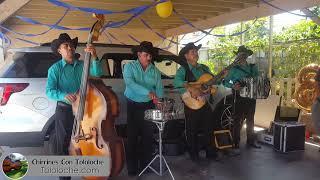 Rosita de Olivo - Chirrines Con Tololoche Los Angeles CA 818-290-4645