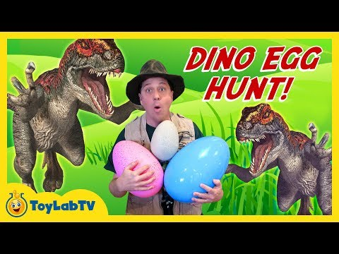 Thumbnail: DINOSAUR TOY HUNT w/ Egg Surprise, Lego Batman Movie Kids Toys Collection Opening, Gummy Snake Candy
