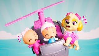 Paw Patrol Toys 🐾 Babies take Skye