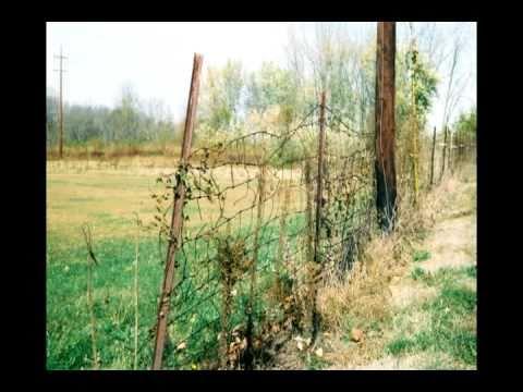 No More Fences to Mend