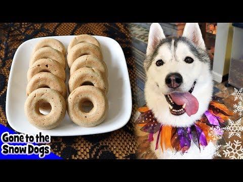 Cider Donuts For Dogs | Homemade Dog Treats Recipe 108 | DIY Dog Treats