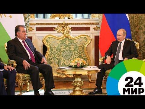 Смотреть Трудовые мигранты, русский язык, сельхозпродукты: о чем договорились Путин и Рахмон - МИР 24 онлайн