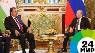 Трудовые мигранты русский язык сельхозпродукты о чем договорились Путин и Рахмон   МИР 24