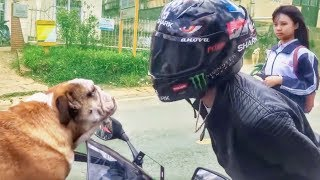 FUNNY, CRAZY & WEIRD THINGS BIKERS SEE, SAY & DO!