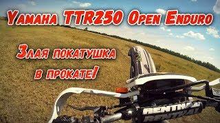 Эндурим на Yamaha TTR250 Open Enduro! [Злой выезд с падениями]