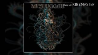 Watch Meshuggah Into Decay video