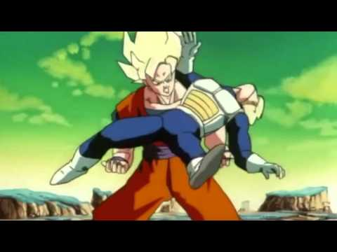 DragonBallZ Crack part 2 ((Funny Videos and Amv))