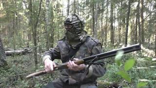 Охота на лося,во время гона 2017
