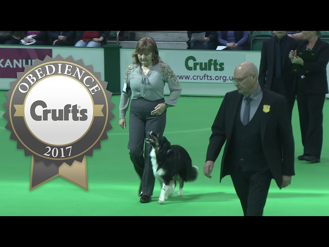 Obedience Championship - Bitches - Part 19 | Crufts 2017