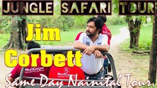 Jim Corbett National Park Vlog | Jim Corbett National Park Tiger Safari | KMI Company Corbeet Tour