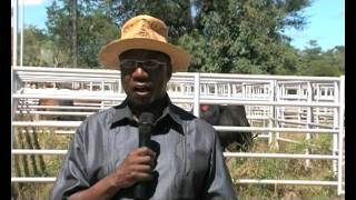 Zambezi farmers reject prices at government auction - NBC thumbnail