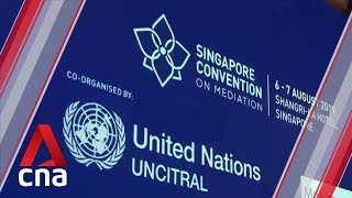 46 countries sign UN treaty named after Singapore