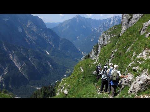Birding in Slovenia and Croatia with Ecotours Wildlife Holidays